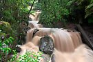 Olinda Falls after 136mm of rain by Travis Easton