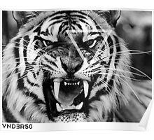 VNDERFIFTY BIG CAT Poster