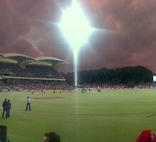 Redbacks win the 20/20, Adelaide Oval by DaveZ
