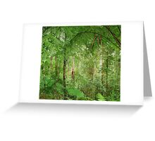 Rainforest - Great Otway National Park Greeting Card