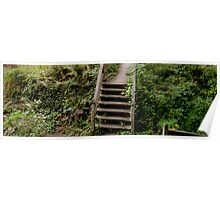 Porch Steps  Poster