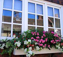 Cottage window by hjaynefoster