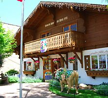 Maple Leaf Cheese and Chocolate Haus, New Glarus, Wisconsin by KevinsView