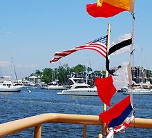 Annapolis Maryland Harbor by KevinsView