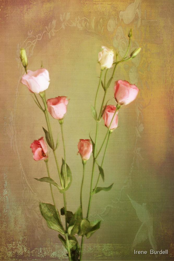 For Sandra  by Irene  Burdell