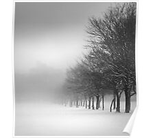Tree Line in Snow Poster