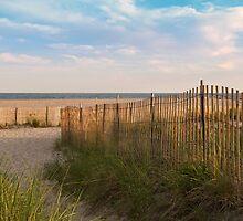 Sunset Beach Stroll by Sally Kady