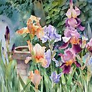 Watercolours by Ann Mortimer by Ann Mortimer