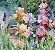 Watercolours by Ann Mortimer by Ann Mortimer