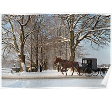 Horse and Buggy - Bird in Hand Poster