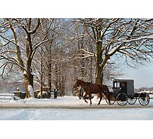 Horse and Buggy - Bird in Hand Photographic Print