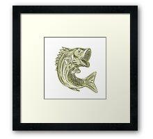 Largemouth Bass Fish Etching Framed Print