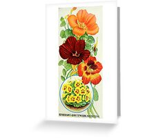 Nasturtiums of 1906 Greeting Card