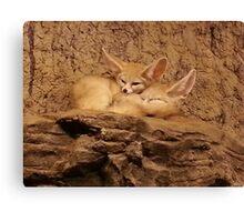 Fennec Fox Love Canvas Print