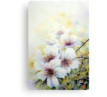 A spring bloom Ballet ! Canvas Print
