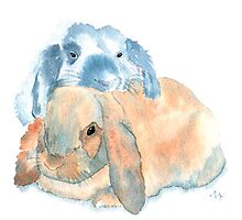 Two Rabbits by Yvonne Carter