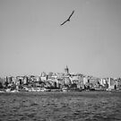 Galata on film by Kutay Photography