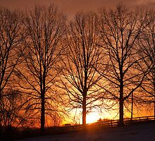 Sundown by David  Guidas