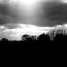 Bring me the horizon by Luke Stevens