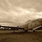 THUNDERJET - Republic F-84G by scubacro
