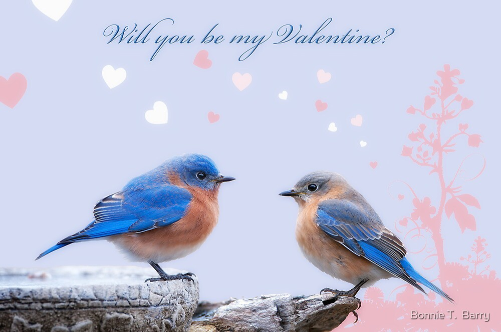 Will you be my Valentine? by Bonnie T.  Barry
