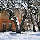 Barnard's Mill Granary by Susan Russell