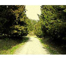 venire per una passeggiata con me Photographic Print