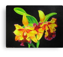 Fiery Orchids Canvas Print
