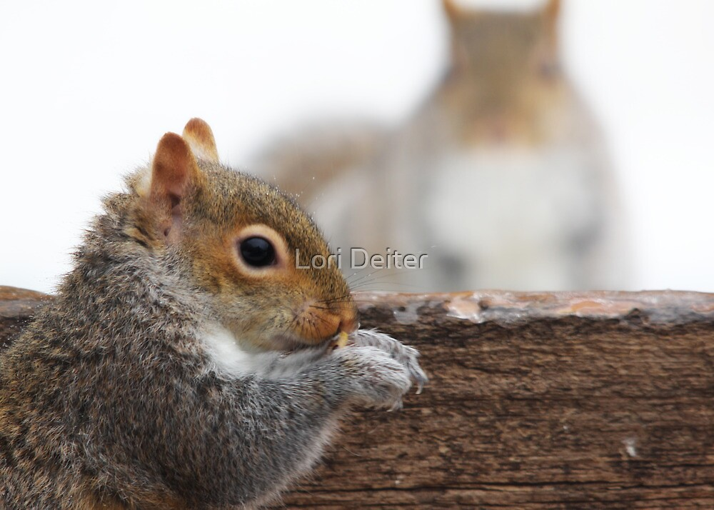 Watching and Waiting by Lori Deiter