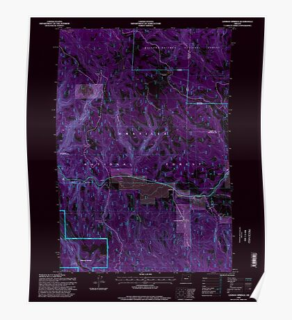 USGS Topo Map Oregon Lehman Springs 280503 1995 24000 Inverted Poster