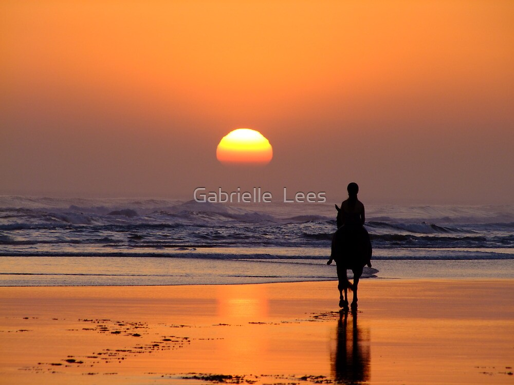 The End of The Day! by Gabrielle  Lees
