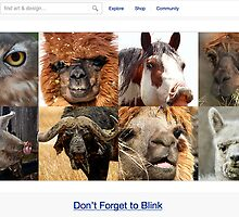 Mug Shots - 6 February 2011 by The RedBubble Homepage