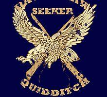 Ravenclaw Seeker by krishnef