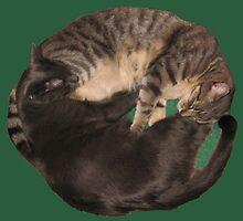 Yin-Yang Cats by Margaret Donsbach