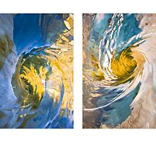 Whirlpool II (Capra and Leonardo) by Steven David Johnson