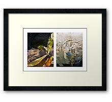 Whirlpool V (Life and Death) Framed Print
