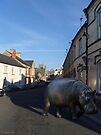 Pilton Street - Barnstaple by Simon Groves