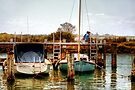 Fishing from the Pier at Queenscliff  by Christine Smith