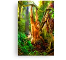 Borneo Baby Canvas Print