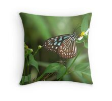 nectar-hungry I Throw Pillow