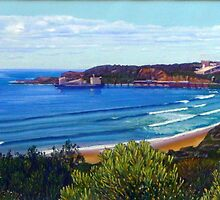 Catherine Hill Bay, NSW, Australia by Carole Elliott