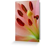 Stamen Greeting Card