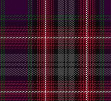 00370 Isle of Arran Fashion Tartan  by Detnecs2013