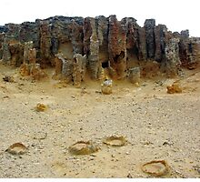 The Petrified Forest - Cape Bridgewater Photographic Print