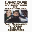 Geriatric Drivers by Darren Stein