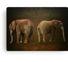 I is for .......Ivory Canvas Print