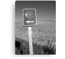 The familiar Camino marker Canvas Print