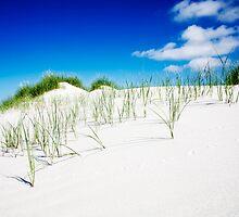dune impressions by TGe-Foto