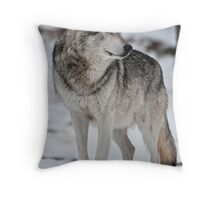 Silent Moment Throw Pillow