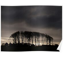 Copse silhouette - The Gower, Wales Poster